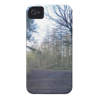 Track Through Delaware Forest in Cheshire iPhone 4 Case-Mate Case