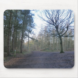 Track Through Delaware Forest in Cheshire Mouse Pad