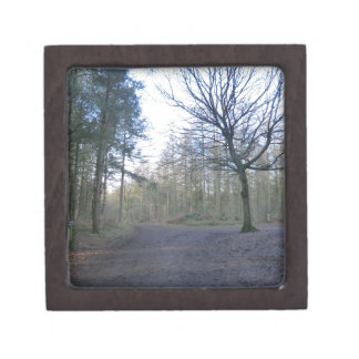 Track Through Delaware Forest in Cheshire Premium Trinket Boxes