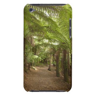 Track to St Columba Falls through Fern Glade, St iPod Case-Mate Case