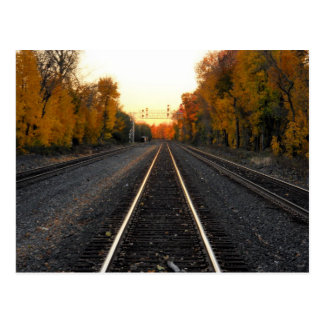 Tracks in the Fall Postcard