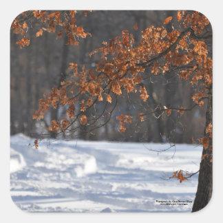 Tracks in the snow square sticker