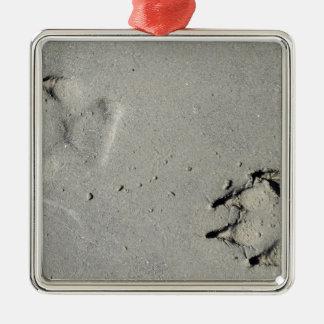 Tracks of a big dog on the sand metal ornament