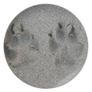 Tracks of dog in sand party plate