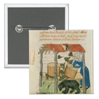 Tractatus de Herbis Button