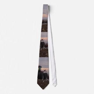 Tractor & Cattle Egrets Tie