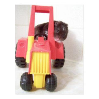 tractor driving noah postcard