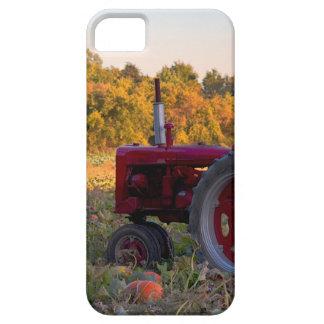 Tractor in a pumpkin field iPhone SE/5/5s case