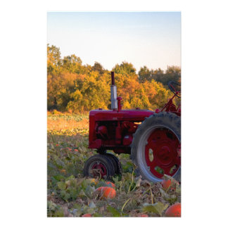 Tractor in a pumpkin field stationery