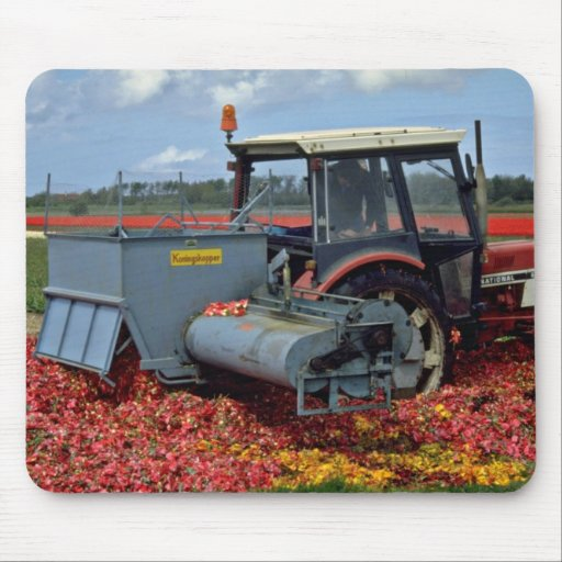 Tractor in the bulb fields, Netherlands  flowers Mousepads