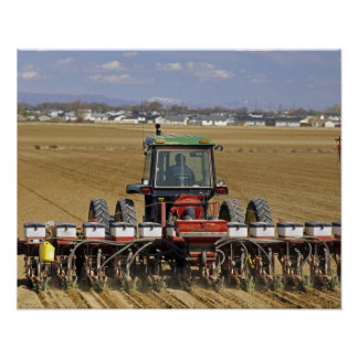 Tractor pulling a seed corn planter. poster