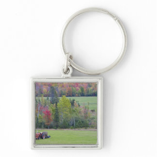 Tractor with hay bale in green field with keychain
