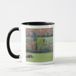 Tractor with hay bale in green field with mug