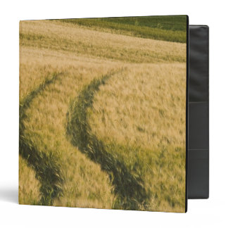 Tractors tracks through wheat, Tuscany, Italy 3 Ring Binder