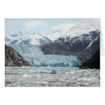 Tracy Arm Fjord Greeting Card
