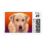 Tracy's Buddy Postage Stamp