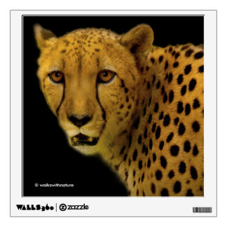 Trading Glances with a Magnificent Cheetah Wall Sticker