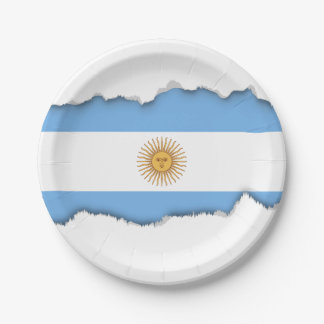 Traditional Argentina Flag Paper Plate