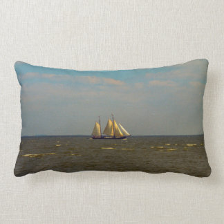 Traditional Dutch sailing vessels, Enkhuizen Throw Pillows