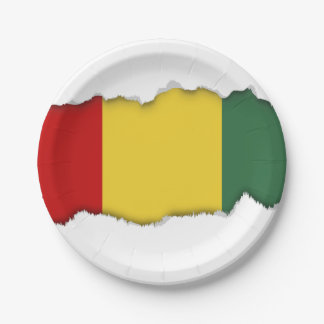 Traditional Guinea Flag Paper Plate