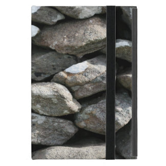 Traditional Irish tone wall covered iPad case