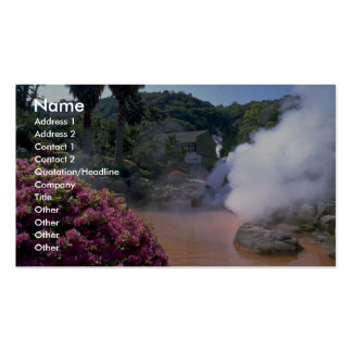 Traditional mineral water bath, Bephu, Japan Business Cards