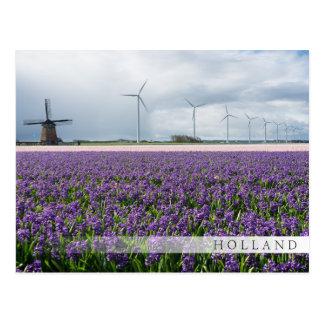 Traditional & modern windmill, Holland bar card
