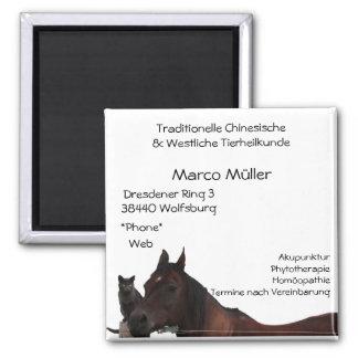 Traditionelle Chinesische & Westliche Tierheilkund 2 Inch Square Magnet