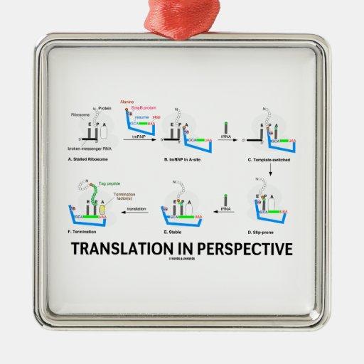Traducción en la perspectiva (proteína de la biolo ornamento para reyes magos