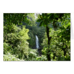Trafalgar Falls Tropical Rainforest Photography Card