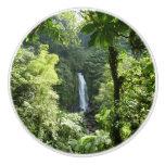 Trafalgar Falls Tropical Rainforest Photography Ceramic Knob