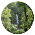 Trafalgar Falls Tropical Rainforest Photography Chocolate Covered Oreo