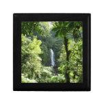 Trafalgar Falls Tropical Rainforest Photography Gift Box