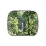 Trafalgar Falls Tropical Rainforest Photography Jelly Belly Candy Tin
