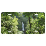 Trafalgar Falls Tropical Rainforest Photography License Plate