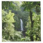Trafalgar Falls Tropical Rainforest Photography Napkin