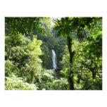 Trafalgar Falls Tropical Rainforest Photography Photo Print