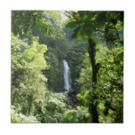 Trafalgar Falls Tropical Rainforest Photography Small Square Tile