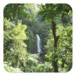 Trafalgar Falls Tropical Rainforest Photography Square Sticker