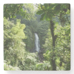 Trafalgar Falls Tropical Rainforest Photography Stone Coaster