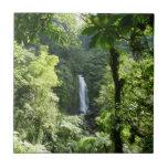 Trafalgar Falls Tropical Rainforest Photography Tile