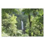 Trafalgar Falls Tropical Rainforest Photography Tissue Paper