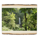 Trafalgar Falls Tropical Rainforest Photography Wood Panel