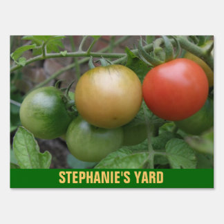 Traffic Light Tomatoes Custom Yard Sign