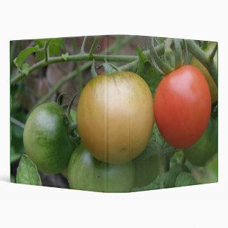 Traffic Light Tomatoes Photograph Album 3 Ring Binder