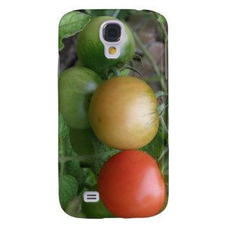 Traffic Light Tomatoes  Samsung Galaxy S4 Case