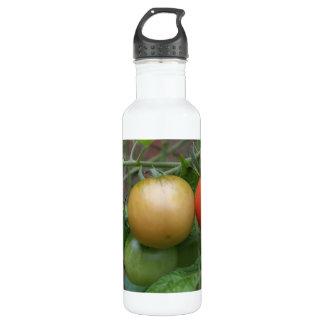 Traffic Light Tomatoes Water Bottle