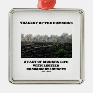 Tragedia de los campos comunes un hecho de la vida adorno de reyes
