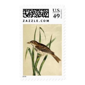 Trago del pantano del vintage sellos