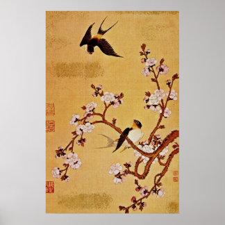 tragos y ramas florecientes, Chiang T'in del blanc Poster
